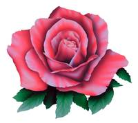 Red Rose - Airbrushed