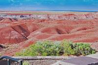red hills in painted desert