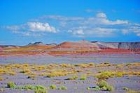 painted desert in petrified forest