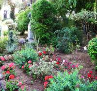 Beautiful garden - Corfu