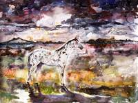 Appaloosa Spirit Horse Original Painting by Ginett