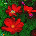 """REDWILDFLOWERS_21x24"" by OregonArtGuy"