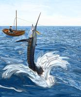 Old man and the Sailfish