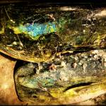 """""""The death-knell iridescence of Dorados"""" by ConceptBlue"""