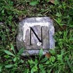 """""""N"""" by carlygirl"""