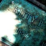 """kitty b."" by carlygirl"