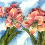 """""""Pink Amaryllas"""" by GayelaChapman"""