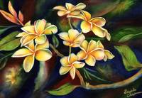 Island Sincerity--Yellow Plumeria