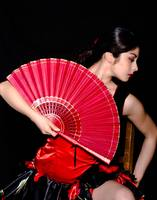 Dancer and the Fan