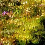 """Giverny spirit XXIV"" by Woodsman"