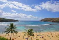 Hanauma Bay Watch