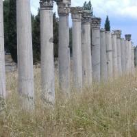 Ephesus Pillars Art Prints & Posters by Amy Stauffer