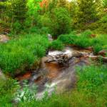 """Rocky Mountain Stream"" by Rad"