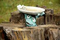 Happy Toad Birdbath