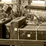 """""""Luggage B&W"""" by SueLeonard"""