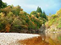Autumn at the Pass of Killiecrankie