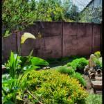 """""""Rincones de mi jardín II"""" by tiare"""