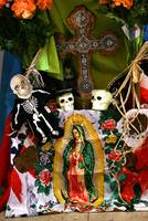 MECA Day of The Dead