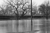 Fargo Flood 2