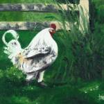 """Rooster and Fence"" by harryboardman"
