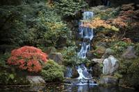 Portland Japanese Garden 10/26/08 Waterfall