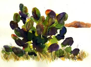 Prickly Pear Cactus By Gayela Chapman Mckelvie
