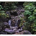 """""""Little Falls"""" by peacelane"""