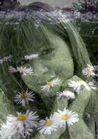 me and my daisies