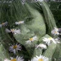 me and my daisies by Louise Dionne