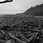 """Kalaloch Beach"" by JonathanWood"