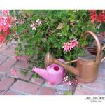 """""""Watering Cans"""" by LauriJon"""