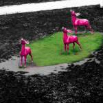 """Three Deer"" by mirabelleza"