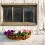 """""""Barn Window"""" by crazyabouthercats"""