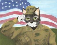 Cat Art USA ARMY Soldier