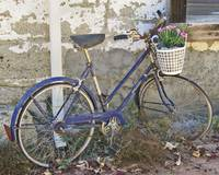 Antique Bike