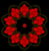 Red Shapes of flowers