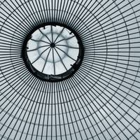 The Kibble Palace Roof