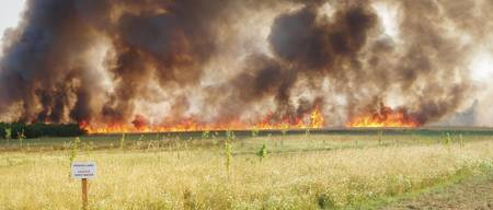 Field Fire at Cottenham