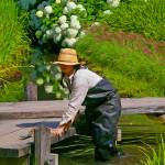 """The Gardener"" by judo_dad1953"