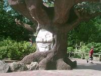 Happy Face on tree
