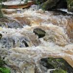 """""""stream"""" by denzil47"""