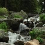 """""""Mountian Stream"""" by WarrenBrown"""