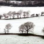 """snow on fields nr cader idris n,wales"" by eyeontheworld"