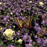 """""""Bell Flowers"""" by shoop3D"""