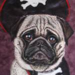 """Duffer the Pirate Pug"" by silverpineart"
