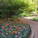 """Flowered Path"" by JonathanKarnofsky"