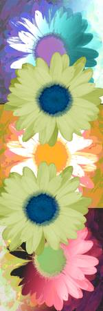 Vertical Daisy Collage II