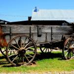 """Texas Farm Wagon"" by CharlesBuchanan"
