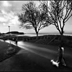 """""""Clevedon"""" by ljesmith"""
