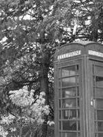 B_W Telephone Booth